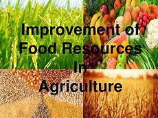 Food Resources Improvement In Food Resources