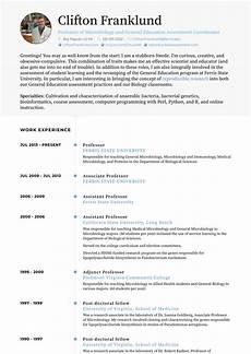 Professor Resume Examples Professor Resume Samples And Templates Visualcv