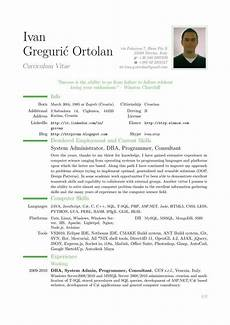 Samples Of A Professional Resume Samples Of Professional Resume Sample Resumes