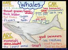Animal Chart For Kindergarten The Creative Colorful Classroom Informational Anchor Charts