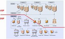 Bioprocess Flow Chart Bioengineering Free Full Text Trends In Upstream And