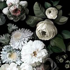 flower wallpaper modern floral wallpaper by ellie cashman design