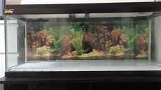 3 Foot Fish Tank Light New Fish Tank 3ft 1ft 1ft Youtube