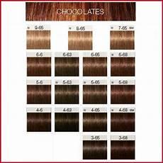 Igora High Power Browns Color Chart Igora Hair Color Shades 621277 Schwarzkopf Igora Royal