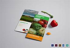 Food Brochure Templates Food Brochure Design Template In Psd Illustrator