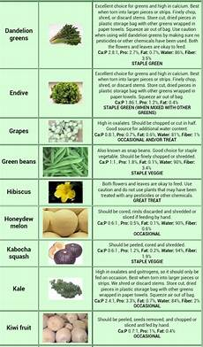 Iguana Food Chart Go Back Gt Gallery For Gt Bearded Dragon Food Chart