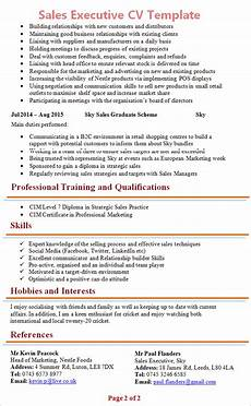 Cv Format For Marketing Executive Sales Executive Cv Template 2