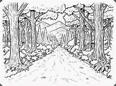 Ausmalbilder Erwachsene Wald Wald Ausmalbild