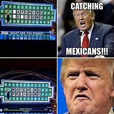 post election donald trump memes essence