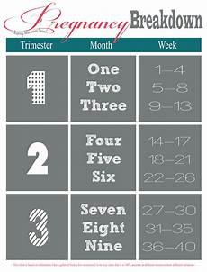 Pregnancy Trimester Weeks Chart Pin On Pregnancy