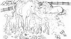 Ausmalbilder Pferde Schmetterling Die 54 Besten Bilder Ausmalbilder Pferde Coloring