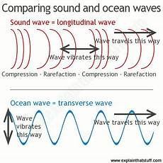 Difference Between Sound Wave And Light Wave A Line Artwork Comparing Longitudinal Sound Waves And