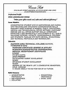 Example Of Profile For Resume Professional Profile Resume