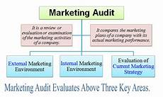 Marketing Audit Example What Is Marketing Audit Definition Meaning