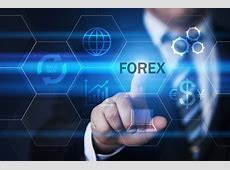 Is Forex Trading Really Profitable?   The European