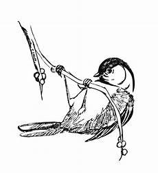 Malvorlage Vogel Kostenlos Malvorlagen Fur Kinder Ausmalbilder Vogel Kostenlos