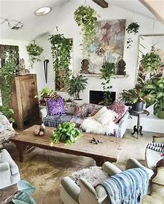 pin on decorate with plants