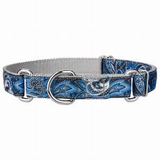 Country Brook Design Dog Collars Country Brook Design 174 Blue Paisley Ribbon Martingale Dog