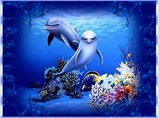 Free Dolphin Wallpapers For Desktop   Wallpaper Cave