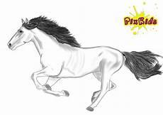 Malvorlage Pferd Zum Ausdrucken Ausmalbild Pferd Kostenlose Malvorlagen