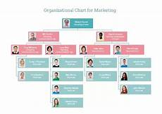 Professional Services Org Chart What Is The Best Software For Creating Organizational