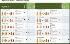 Almond Variety Chart Almond Brands Amp Bulk Almond Products California Royale