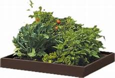 planters you ll wayfair