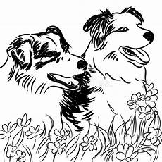 two border collie dogs in flower field stock vector