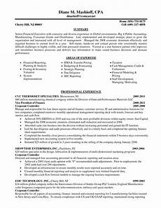 Big 4 Resumes Cv Template Big 4 Resume Examples Professional Resume