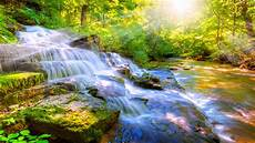 Free Nature Backgrounds Wallpaper Computer Nature 64 Images