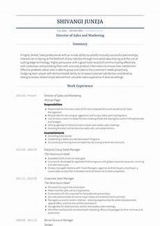 Sales Marketing Resume Sample Free Real Professional Resume Samples Visualcv