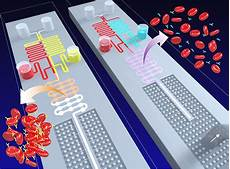 Lab On Chips New Device Brings Us Closer To Coin Sized Medical Labs