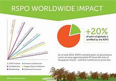 Rsp Po Roundtable On Sustainable Palm Oil Rspo Spott