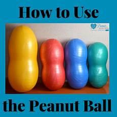 Peanut Ball Chart Original Peanut Ball Positional Chart Premier Birth Tools