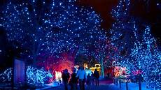 Light Festival Houston 2019 7 Best Things To Do In Colorado This Weekend Nov 30 Dec 2