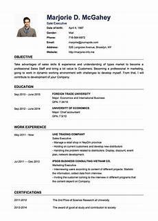 Professional Cv Examples Professional Examples Of Cv Public Relation Officer Cv