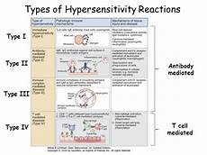 Hypersensitivity Reaction Hypersensitivity Reactions Type I Iv Faculty Of Medicine