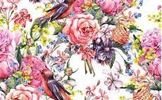 flower wallpaper watercolor watercolor wallpaper hd pixelstalk net