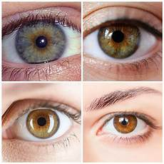 How To Get Light Brown Eyes Fast The Best Eye Makeup For Hazel Eyes