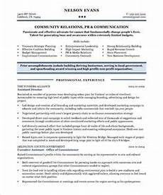 Non Profit Resume Mentoring Program Modern Non Profit Executive Page1 Non Profit Resume Samples