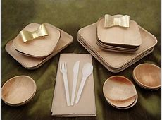 Eco Friendly Disposable Dinnerware   Biodegradable