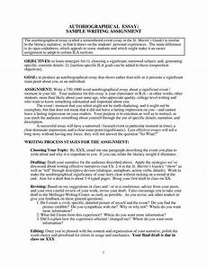 Biographical Essay Example 026 How To Write Biographical Essay Example Best Ideas Of