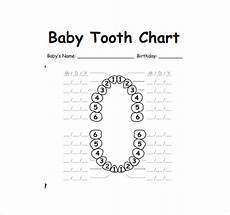 Baby Teeth Chart Letters Free 11 Sample Teeth Chart Templates In Pdf Ms Word