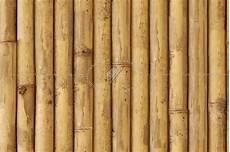 Bamboo Texture Bamboo Texture Seamless 12270