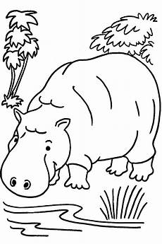 coloring pages animals jungle animals coloring pages for