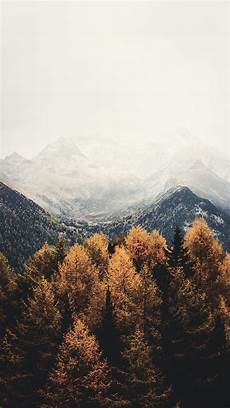 Fall Wallpaper Iphone Aesthetic by 15 Gorgeous Happy Fall Iphone X Wallpapers Wallpaper