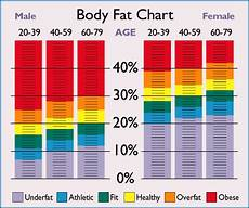 My Low Carb Road To Better Health Ideal Body Fat For Men