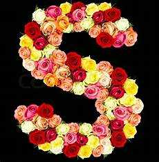 flower wallpaper letter s roses flower alphabet isolated on stock photo