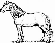 Malvorlage Pferd Gratis Pferd Mit Schoener Maehne Ausmalbild Malvorlage Tiere