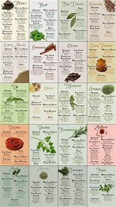 Spice Guide Chart Herb Amp Spice Chart Common Sense Evaluation